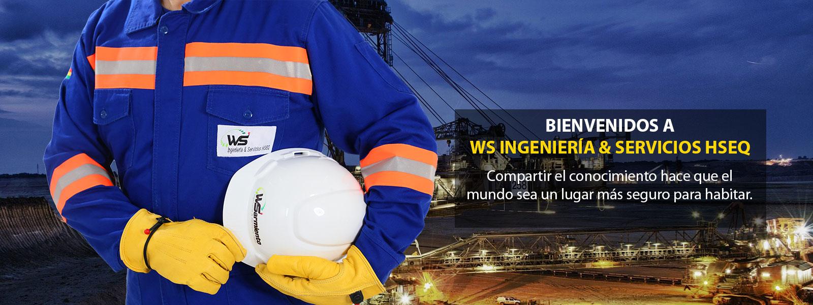 wsafe-ingenieria-y-servicios